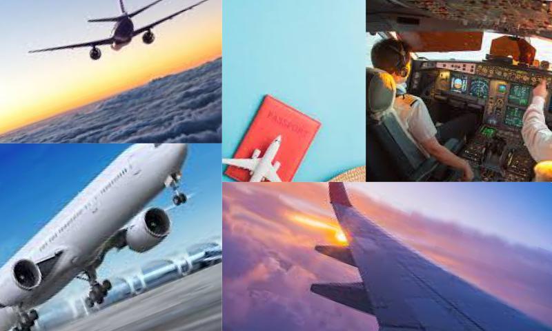 Aircraft Management Ne İşe Yarar?